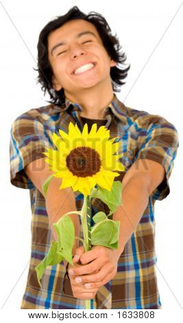 Happy Man Givng A Sunflower