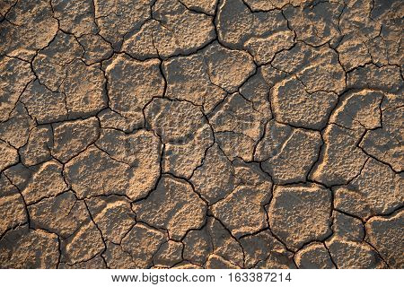 Chapped ground is after-effect of a drought. It's a problem.