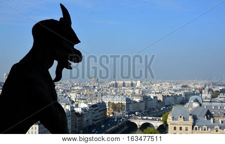 PARIS, FRANCE - OCT. 19: The Notre Dame cathedral of Paris gargoyle, France, on october 19, 2014, one of the most famous landmarks in Paris. In 2013, the cathedral celebrate its 850 years anniversary.