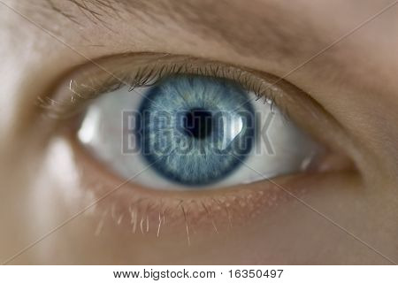 Mans blue eye close up