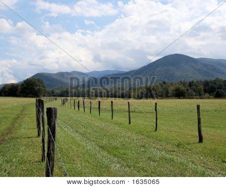Mountain Fenceline