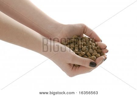 womans hands full of dog food or kibble on white background