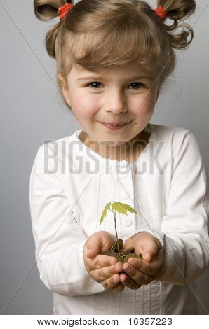 Seedling growth from coins