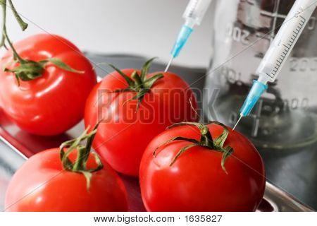 Genetic Experiment