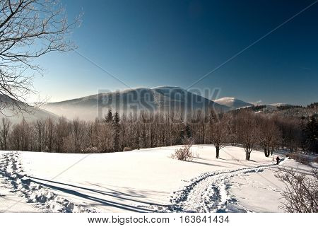 winter in Moravskoslezske Beskydy mountains with hills, snow, isolated tree, hiking trail and clear sky on Butoranka bellow Lysa hora hill