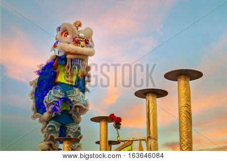 BANGKOK, THAILAND - FEBRUARY 20 2015: Unidentified group of people perform a traditional lion dance at Rama IX public park to celebrate traditional Chinese's lunar new year