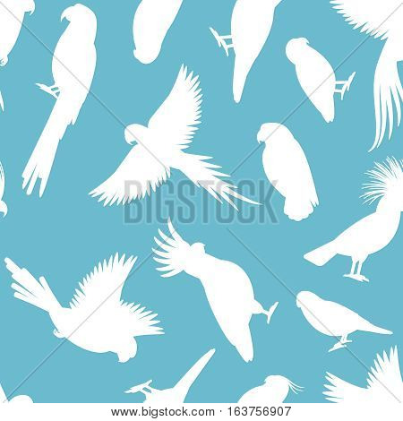 Birds vector pattern. White parrots silhouettes on light blue background
