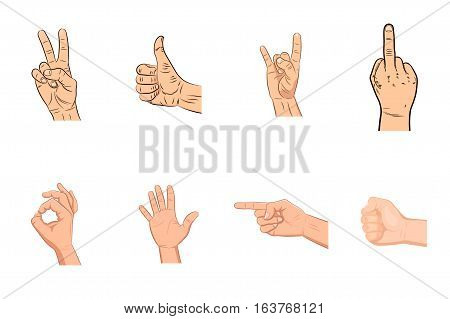 Set of realistic vector hands with various expressions. Victory sign. Peace hand gesture symbol icon. Thumbs up. Like. Dislike. Good. Ok. Rock n roll sign. Clenched fist. Ok. Pointing. Palm. Fuck.