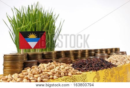 Antigua And Barbuda Flag Waving With Stack Of Money Coins And Piles Of Wheat And Rice Seeds