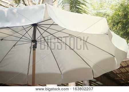 White umbrella in the garden stock photo