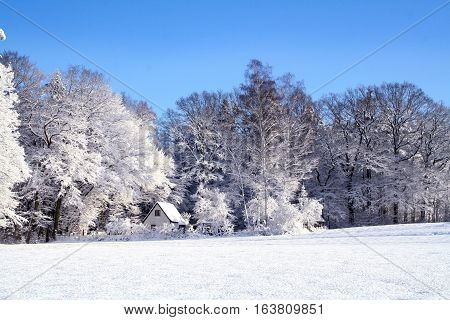 snowy winter. snow. still life. Snow leads nature. a very beautiful picture. maximum resolution
