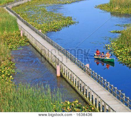 Canoeing The Marsh
