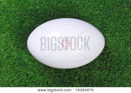 A white leather rugby ball on grass.