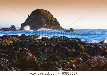 Point Reyes Sea Shore Landscape With Sea Stacks