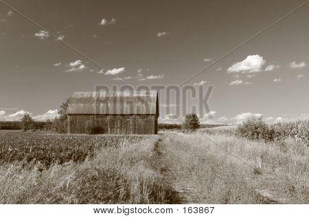 Old Sepia Toned Barn