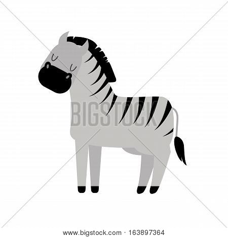 Zebra isolated on white and wildlife animal vector. Funny mammal africa black white zoo nature standing stripe. Savanna fauna symbol wilderness looking burchell.