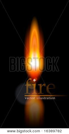Flame. Vector illustration. Eps10