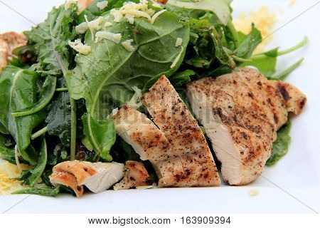 Simple white plate with grilled chicken slices and fresh greens