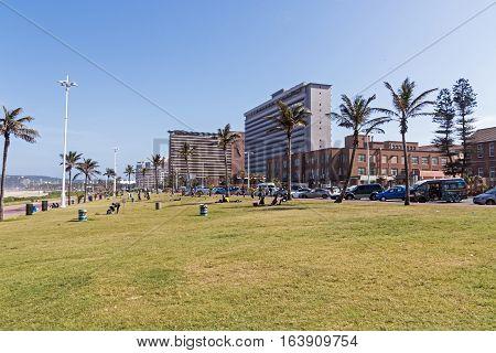 Grass Verge Against Goldem Mile City Beach Front Skyline