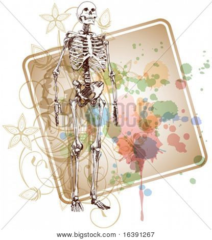 Skeleton sketch & floral calligraphy ornament - a stylized orchid & color paint background