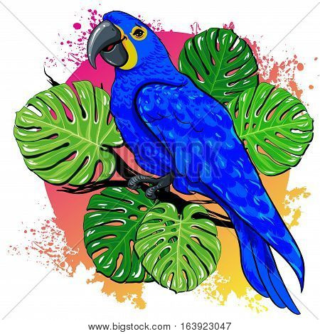 vector illustration bright parrot bird blue and yellow pattern on head against the background of large green tropical palm tree leaves