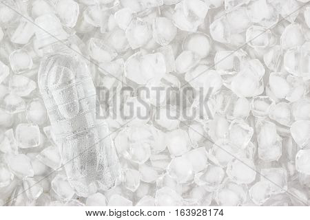plastic water bottle is cooling in the ice