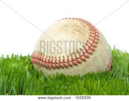 Softball In Grass Close Up
