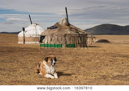 Yurta- traditional dwelling of mongolian nomads