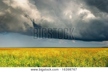 Summer landscape with meadow and storm clouds