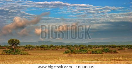 African savanna in Queen Elizabeth N.P., Uganda