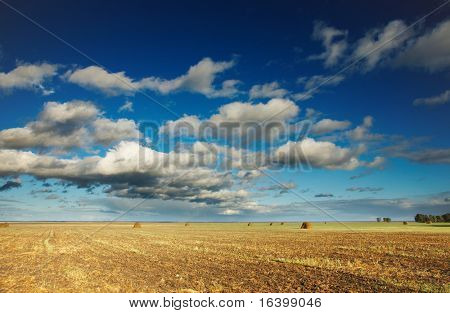 Summer landscape with hayfield and blue sky