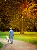 foto of dog-walker  - man walking with his dog  - JPG