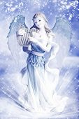 stock photo of christmas angel  - a beautiful Christmas angel over blue winter background - JPG