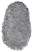 Carbon fingerprint made from a photo of genuine carbon fibre, isolated on a white background. Enviro