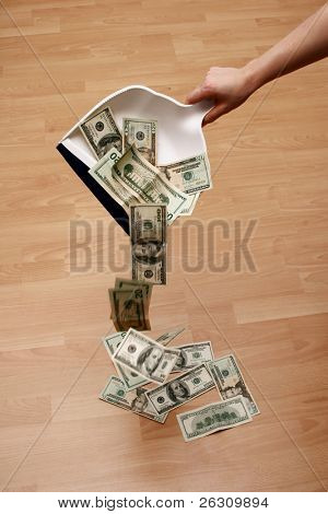 Dustpan and money