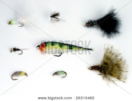 Picaduras de peces