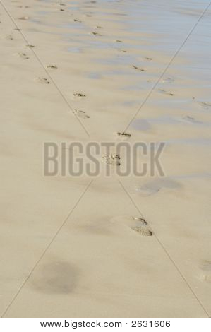 Footprint Path Gold Coast Australia