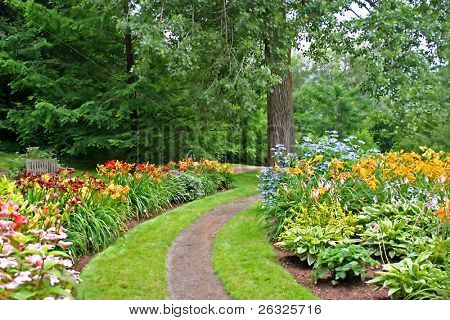 A path in a park running through beds of flowers, primarily daylilies.
