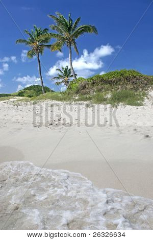 Wellen am Strand von Tobago Cays Abwasch.