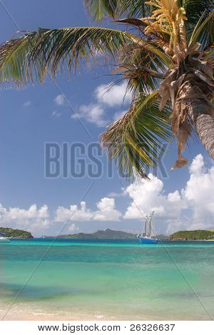 A sailing ship off in the distance from a tropical beach in the Tobago Cays.