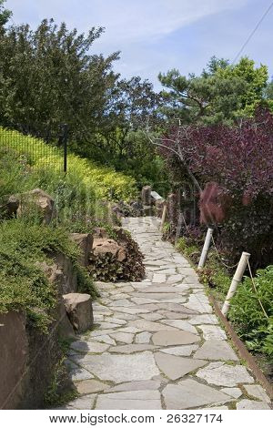 Flagstone walkway through a Japanese garden.