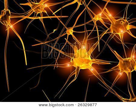 High resolution image of axon of nerve cell (neurons)