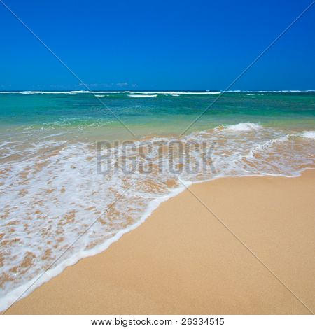 Wave surging on sand on peaceful beach