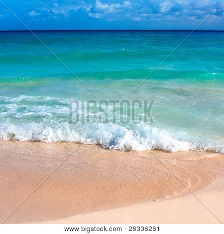 Beautiful beach and  waves of Caribbean Sea. Please search for more beaches in my portfolio.