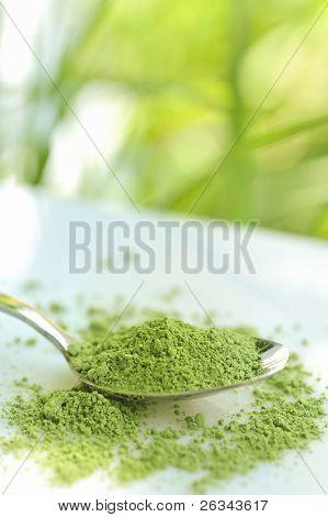 green barley powder