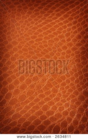 Tanned Crackled Leather