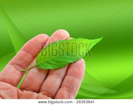 Leaf on hand