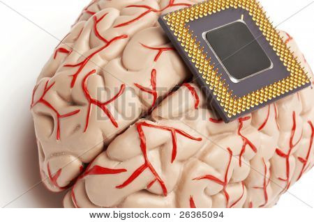 brain model and processor, human and artificial brains