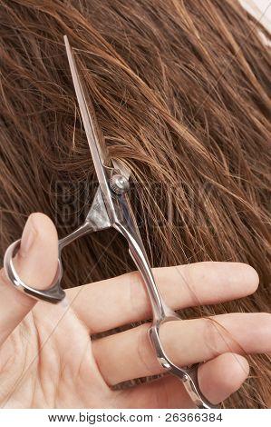 man cutting long blond wet hair of a woman, beauty salon