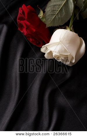 smooth black satin and red and white rose